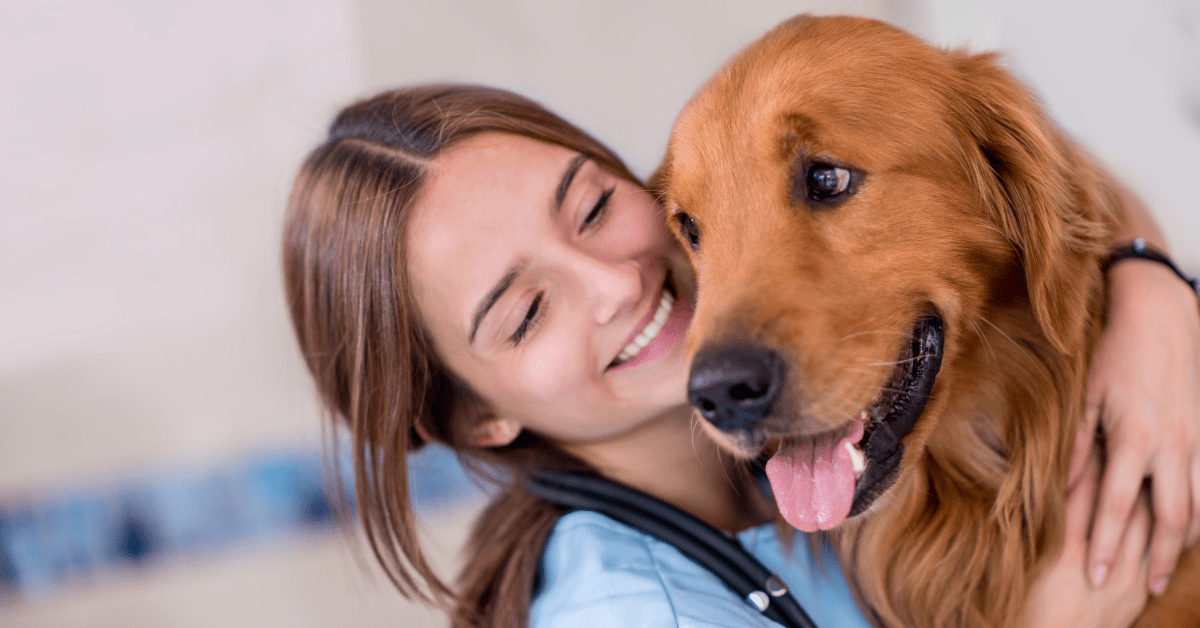 Study reveals what makes vets feel good